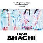 TEAM SHACHI [Type B] (Normal Edition)(Japan Version)