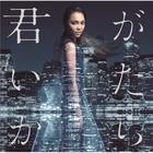 Kimi ga Itakara (SINGLE+DVD) (First Press Limited Edition)(Japan Version)