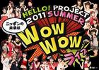 Hello! Project 2011 SUMMER - Nippon no Mirai wa WOW WOW Live - (Japan Version)