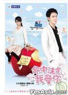Destiny Love (TV Drama Novel)
