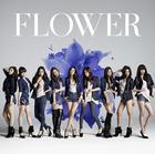 Still (Normal Edition)(Japan Version)