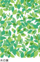mt Window Decorations : mt CASA shade s Leaves