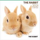 THE RABBIT 2021年月历 (日本版)
