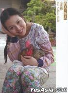 金孫 (DVD) (雙碟精裝版) (台灣版)