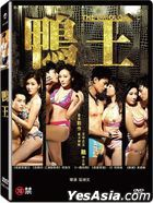 The Gigolo (2015) (DVD) (Taiwan Version)