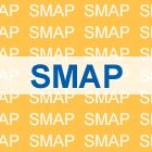 Smap Vest (Japan Version)