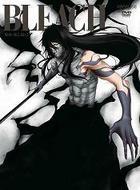 Bleach - Arrancar Metsubo Hen (DVD) (Vol.12) (Japan Version)