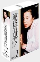 Kaseifu wa Mita DVD Box 1 (DVD) (Japan Version)