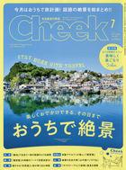 Cheek 16145-07 2020