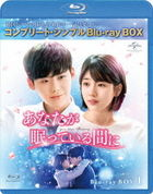 While You Were Sleeping (Blu-ray) (Box 1) (Japan Version)