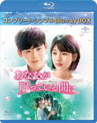 While You Were Sleeping (Blu-ray) (Box 2) (Japan Version)