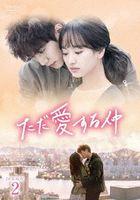 只是相爱的关系 DVD (BOX 2)(日本版)