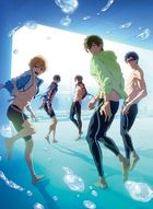 Free! -Road to the World Yume- (DVD) (Japan Version)