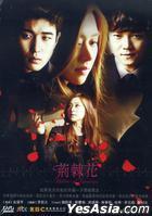 荊棘花 (DVD) (完) (韓/國語配音) (JTBC劇集) (台灣版)
