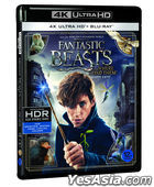 Fantastic Beasts and Where to Find Them (4K Ultra HD + Blu-ray) (2-Disc) (Limited Edition) (Korea Version)