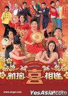 新抱喜相逢 (DVD) (完) (中英文字幕) (TVB劇集) (美國版)