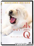 Little Q (2019) (DVD) (Taiwan Version)