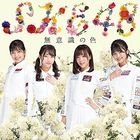 Muishiki no Iro  [Type D] (SINGLE+DVD) (First Press Limited Edition) (Japan Version)