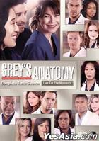 Grey's Anatomy (DVD) (Complete Tenth Season) (Hong Kong Version)