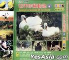 Endangered Animals Of The World 4 (VCD) (Hong Kong Version)