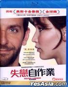 Silver Linings Playbook (2012) (Blu-ray) (Hong Kong Version)