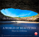 JAL「A WORLD OF BEAUTY」 2021年月历 (日本版)