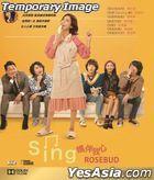 Sing妈伴我心 (2019) (DVD) (香港版)