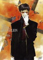 Neon Genesis Evangelion (DVD) (Standard Edition) (Vol.8)  (Japan Version)