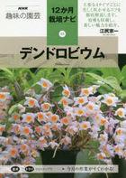 dendorobiumu enueichike  shiyumi no engei NHK shiyumi no engei jiyuunikagetsu saibai nabi 15 12kagetsu saibai nabi 15