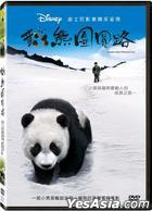 Trail of the Panda (DVD) (Taiwan Version)