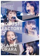 Kobushi factory First Concert 2019 Haru Urara - GW Special (Japan Version)