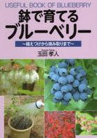 hachi de sodateru buru beri  uetsuke kara tsumitori made