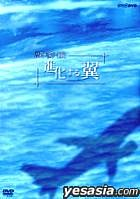 ryokakukishinkasurutsubasa