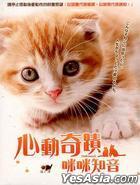 心動奇蹟:咪咪知音 (DVD) (中文字幕) (台灣版)