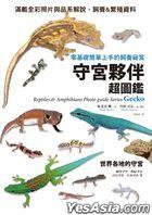見て楽しめる爬虫類・両生類フォトガイドシリーズ ゲッコーとその仲間たち