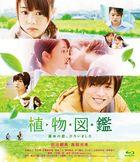 Evergreen Love (Blu-ray) (Normal Edition) (Japan Version)