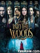 Into The Woods (2014) (DVD) (Hong Kong Version)