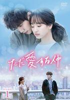 只是相爱的关系 DVD (BOX 1)(日本版)
