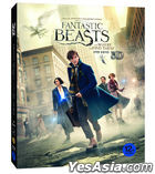 Fantastic Beasts and Where to Find Them (2D + 3D Blu-ray) (2-Disc) (Outbox + Creature Card Limited Edition) (Korea Version)