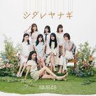 Shidare Yanagi [Type C] (SINGLE+DVD) (Japan Version)