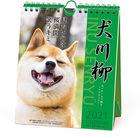 犬川柳 2021年周历 (日本版)