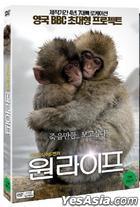 One Life (DVD) (Korea Version)