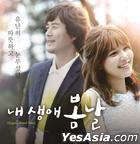 My Spring Days OST (MBC TV Drama)