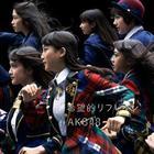 Kibouteki Refrain [Type B](SINGLE+DVD) (Normal Edition)(Japan Version)