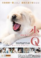 Little Q (2019) (DVD) (Hong Kong Version)
