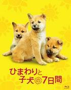 ひまわりと子犬の7日間 [Blu-ray Disc]