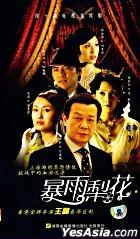 暴雨梨花 (VCD) (第二辑) (完) (中国版)