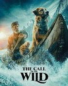 極地守護犬 (Blu-ray + DVD)(日本版)