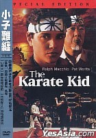 The Karate Kid (Special Edition) (Taiwan Version)