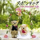 The Beautiful Life (Normal Edition)(Japan Version)